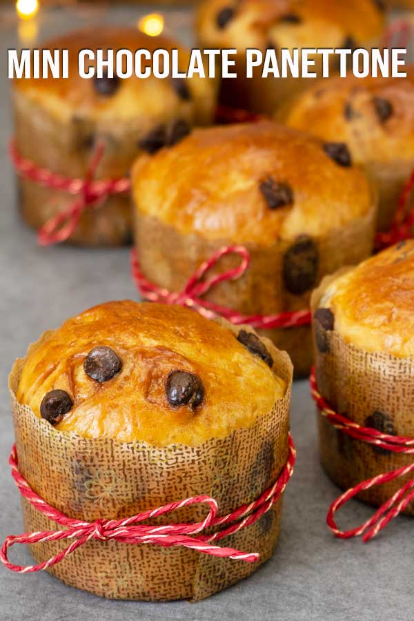 This mini chocolate panettone recipe it's so easy to make at home. They are soft and fluffy with bits of chocolate all over. If you prefer candied fruits and nuts, you can use them instead. #panettone #minibread #chocolatebread #holidayrecipes #elmundoeats