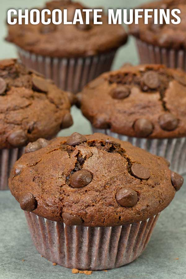 Soft fluffy good old chocolate muffins, ready to be eaten in less than 30 minutes. Yep. A must have in your recipe collections. #muffin #chocolatemuffins #quickmuffin #easyrecipe #elmundoeats