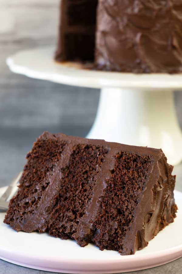 Devil's Food Cake Portion