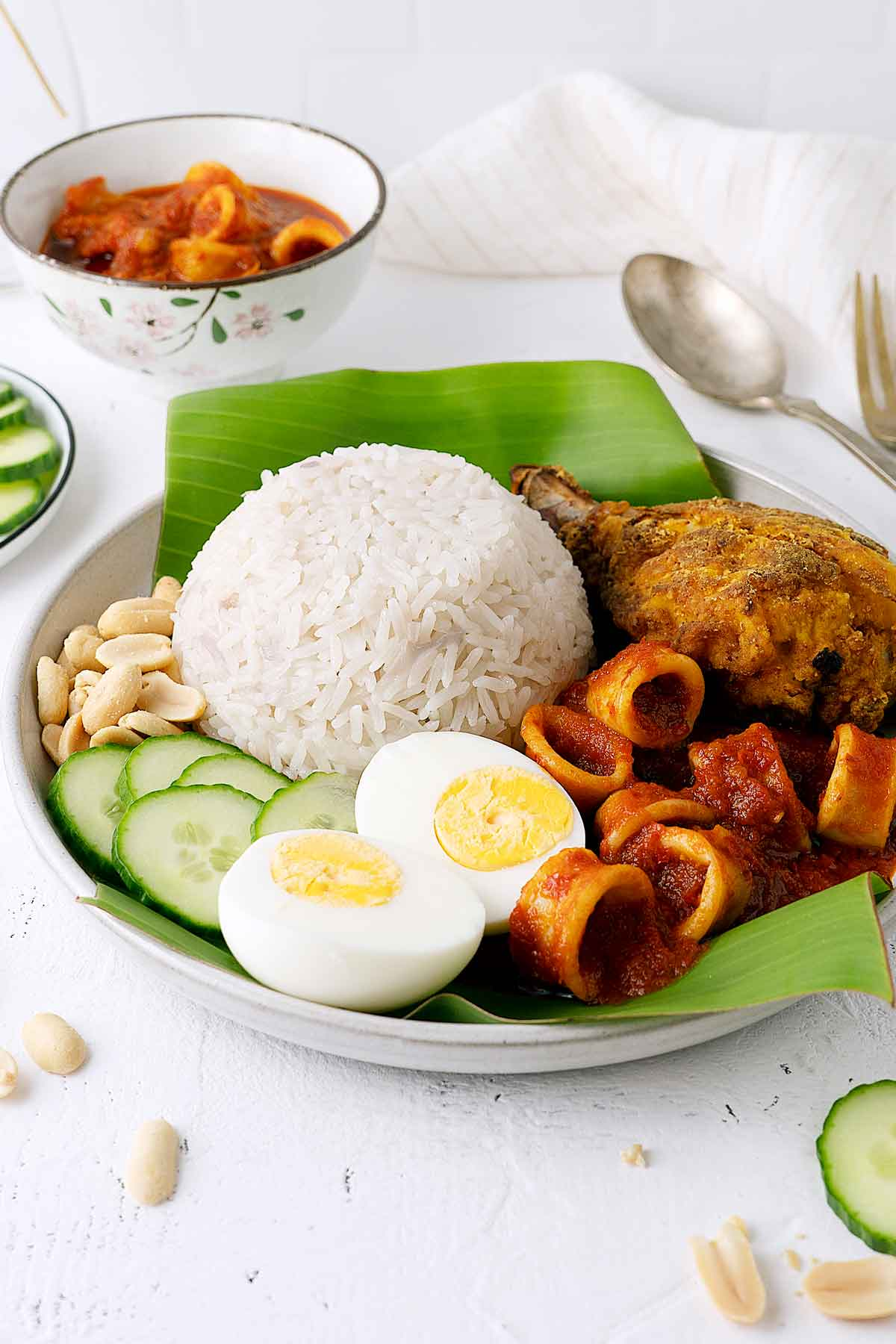 Nasi lemak in a plate with all its trimmings view from front