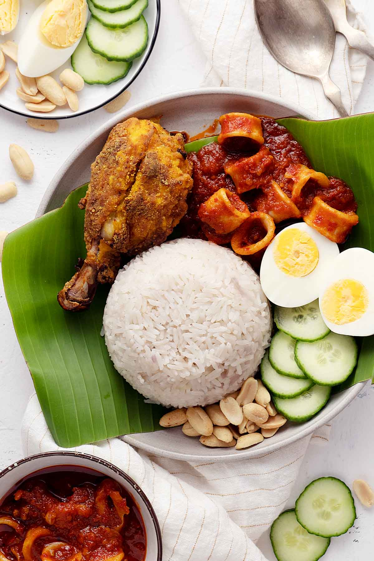 Nasi lemak in a plate with all its trimmings