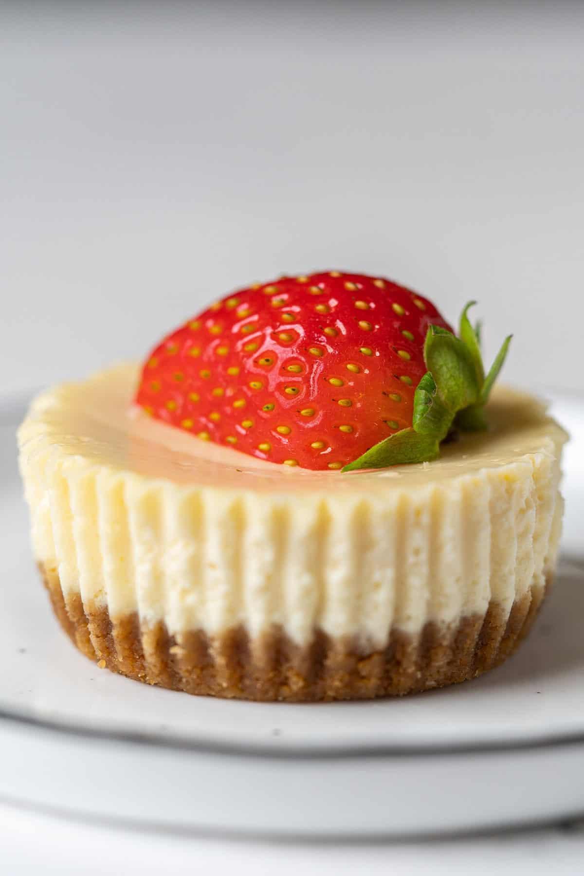 Close up one mini cheesecake